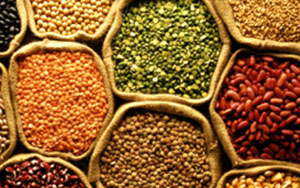 selling the indian grains and pulses The latest tweets from ipga (@ipgapulses) india pulses and grains association (ipga) aims at making indian pulses and grains industry & trade globally competitive mumbai, india.